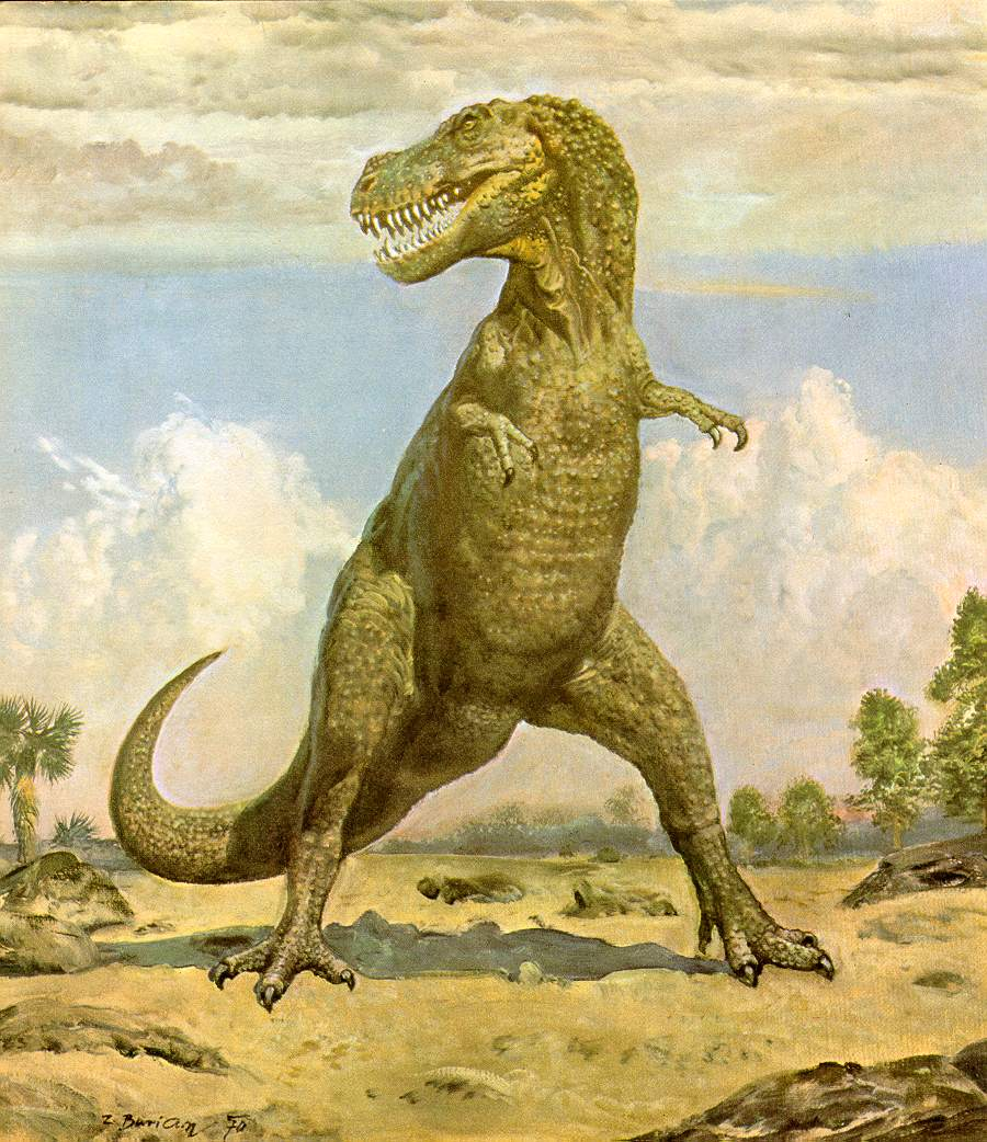 tyrannosaurus rex essay Free essay: tyrannosaurus rex means tyrant lizard king it is also called trex  abbreviation the first t rex was first found by barnum brown.